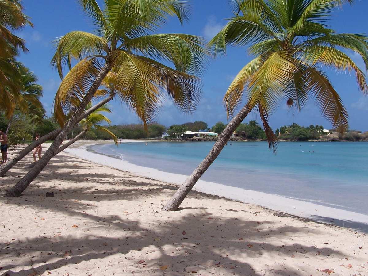 image Passer des vacances attractives à Fort-de-France en Martinique