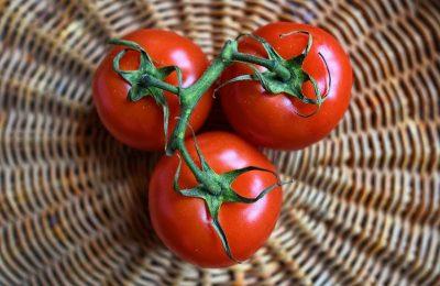 10 conseils pour réussir la culture de vos tomates