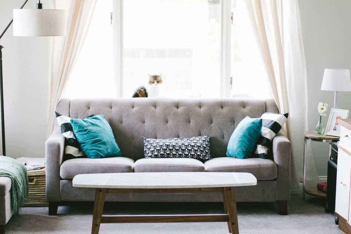 image Acheter un canapé design, les tendances 2019