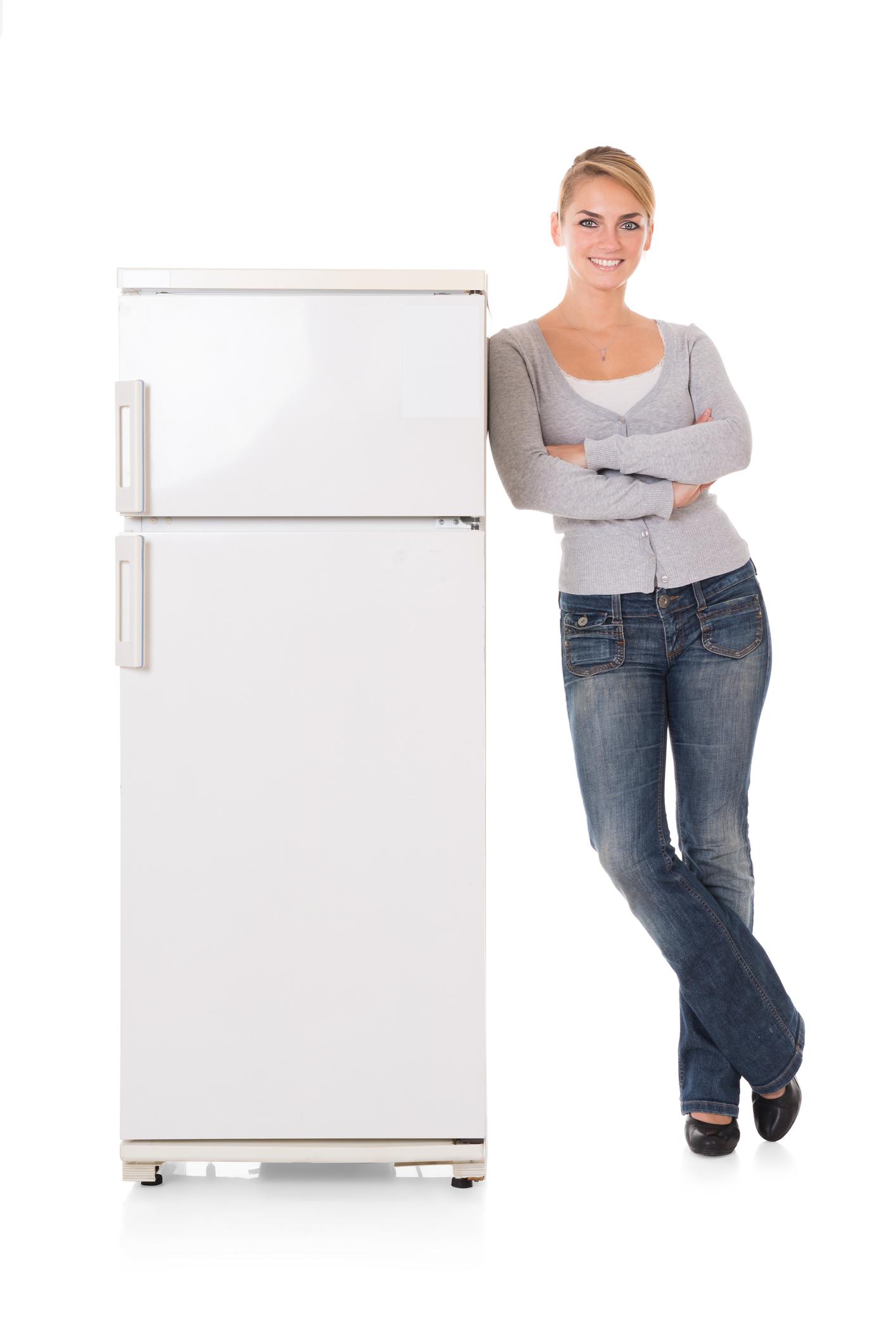 quel r frigirateur choisir acheter le bon frigo. Black Bedroom Furniture Sets. Home Design Ideas