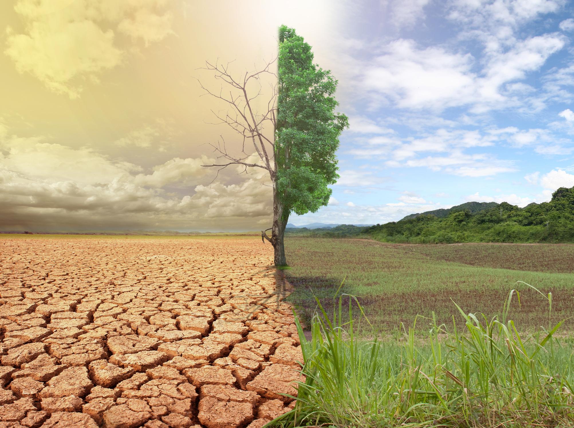 image Réchauffement climatique : histoire, conséquences et effets